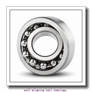 Toyana 2305-2RS self aligning ball bearings