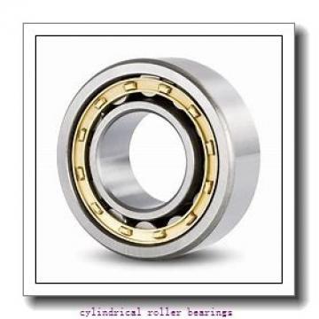 40 mm x 80 mm x 18 mm  KOYO NU208 cylindrical roller bearings