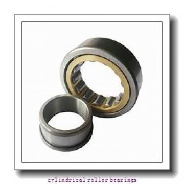 85 mm x 180 mm x 41 mm  NACHI NP 317 cylindrical roller bearings