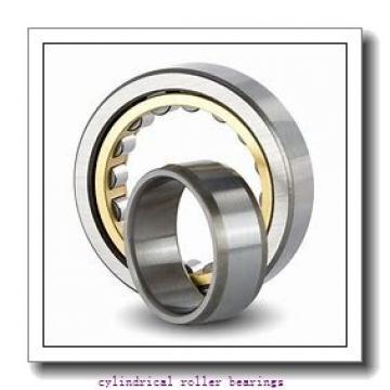 105 mm x 160 mm x 41 mm  SKF NN 3021 KTN9/SP cylindrical roller bearings
