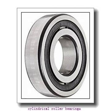 55 mm x 120 mm x 29 mm  NACHI NUP311EG cylindrical roller bearings