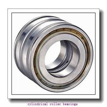 80 mm x 125 mm x 22 mm  NSK N1016RXTP cylindrical roller bearings