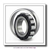 300 mm x 460 mm x 74 mm  NKE NU1060-M6 cylindrical roller bearings